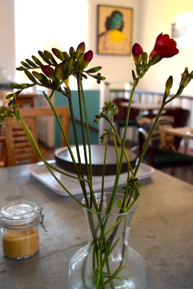 Freesias at Pop Up Cafe, Deal   www.rachelphipps.com @rachelphipps