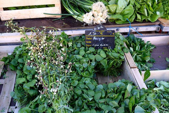 Local Greens at Combourg Market, Brittany | www.rachelphipps.com @rachelphipps