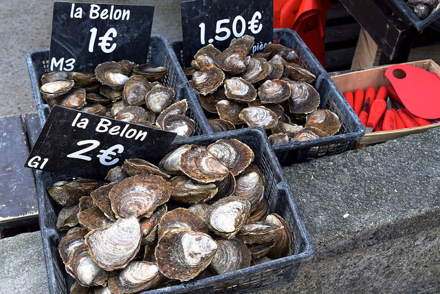 Local Flat Oysters in Cancale, Brittany | www.rachelphipps.com @rachelphipps