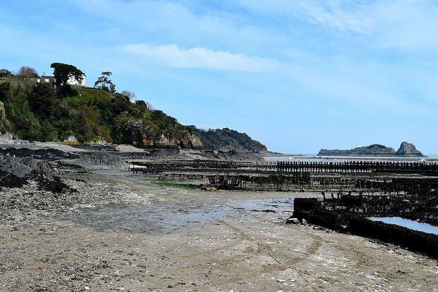 Cancale, Brittany | www.rachelphipps.com @rachelphipps
