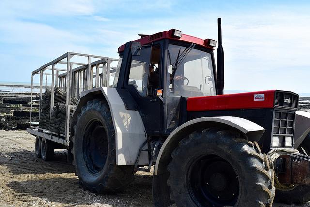 Oyster Tractor in Cancale, Brittany | www.rachelphipps.com @rachelphipps