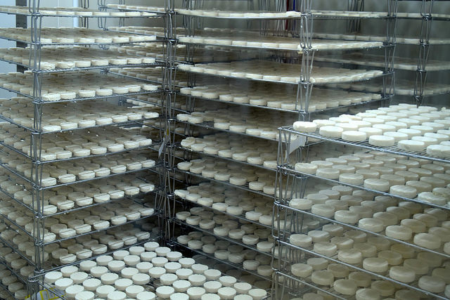 Rocomadour Goats Cheese in the Dordogne Valley | www.rachelphipps.com @rachelphipps