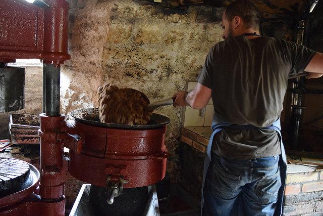 Making Walnut Oil in the Dordogne Valley | www.rachelphipps.com @rachelphipps