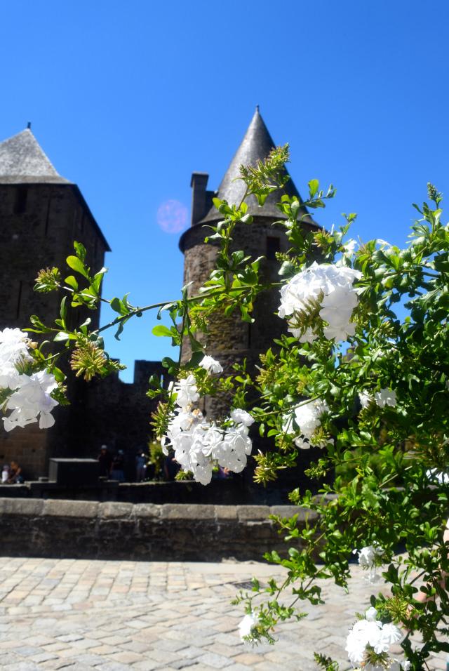 Fougeres Castle, Brittany   www.rachelphipps.com @rachelphipps