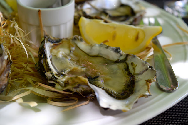 Oysters at Hotel Restaurant du Chateau, Combourg   www.rachelphipps.com @rachelphipps