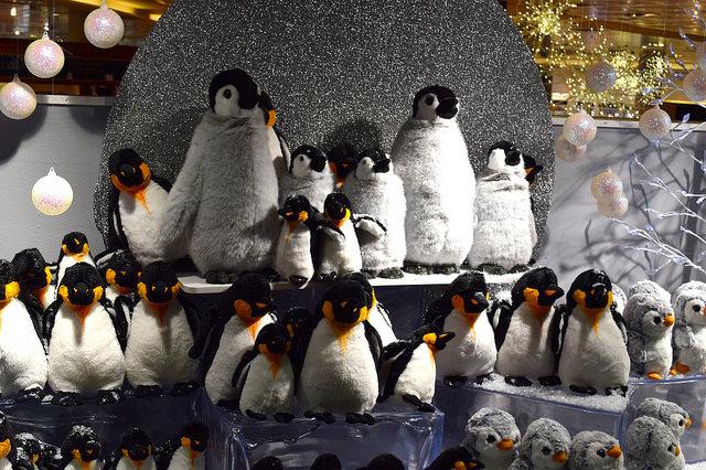 Fenwick Penguin Christmas Windows, Canterbury #christmas