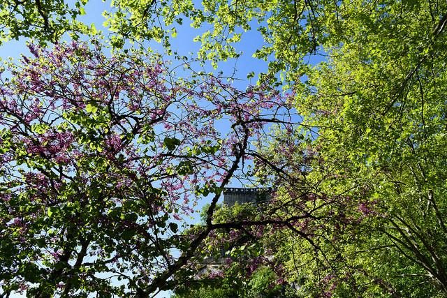 Springtime at Rocamadour, Lot #unesco #rocamadour #france #travel #travelguide