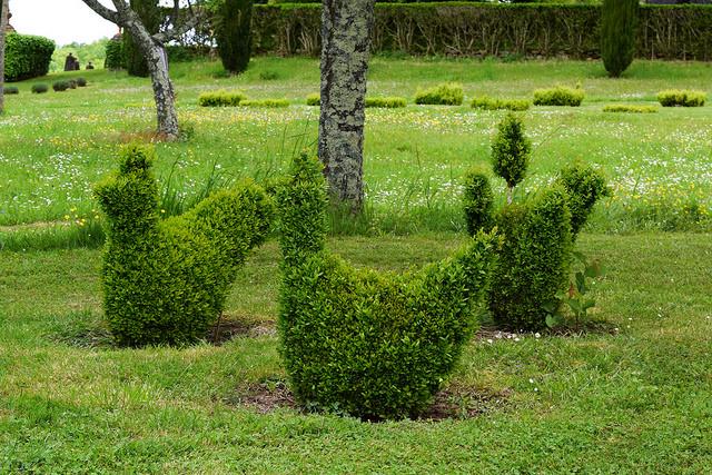 Topiary Hens at the Jardins de Eyrugnac #gardens #eyrugnac #dordogne #france #travel