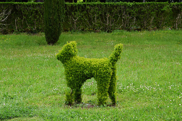 Topiary Cat at the Jardins de Eyrugnac #gardens #eyrugnac #dordogne #france #travel