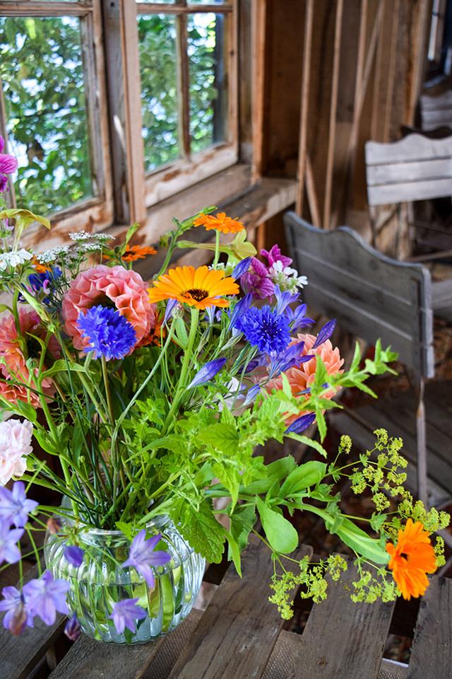 Wild Flowers at Wealden Literary Festival 2018